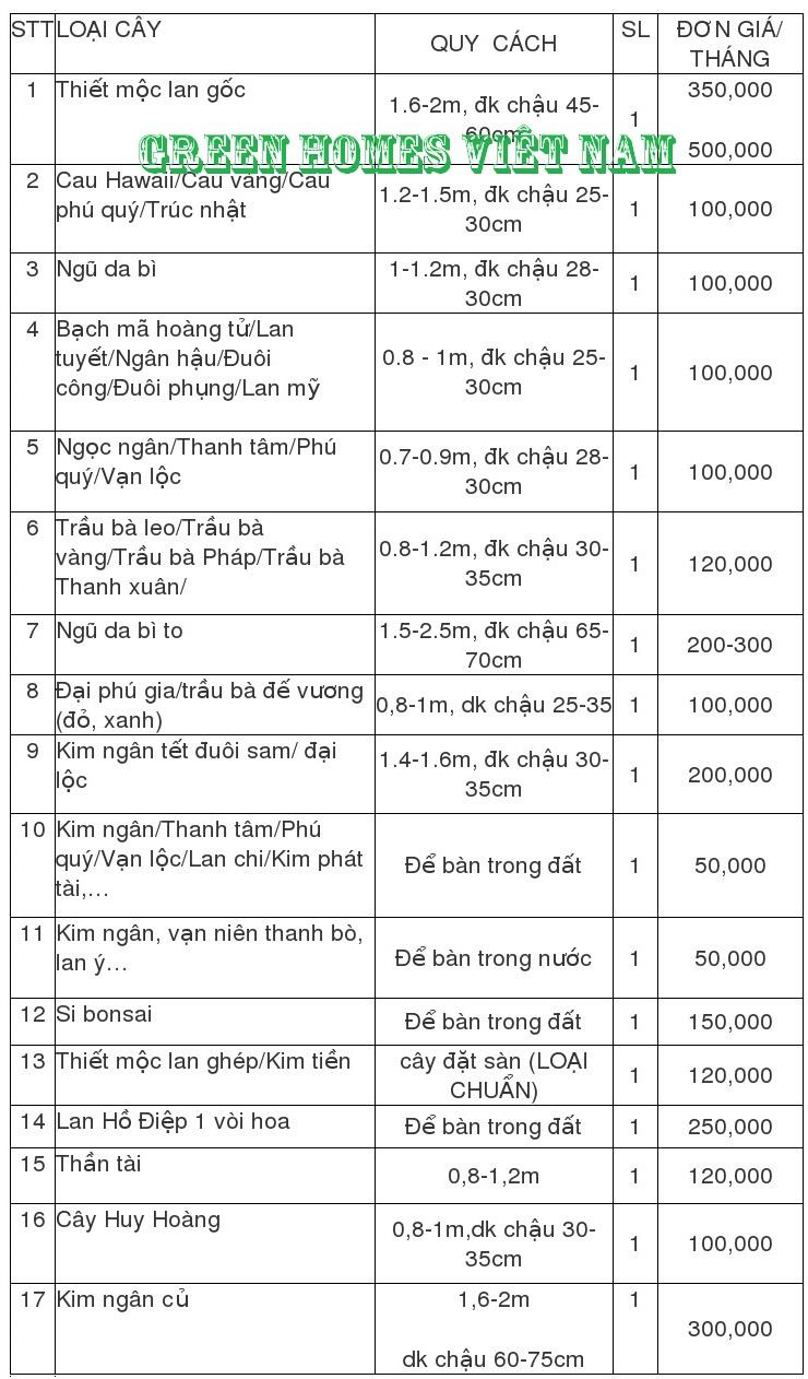 Bảng giá cho thuê cây cảnh văn phòng tại Hà Nội