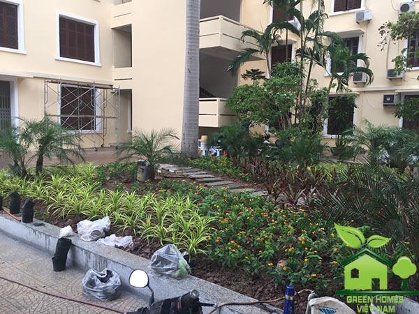 Cải tạo sân vườn tại học viện hành chính quốc gia