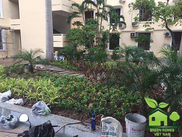 Dự án cải tạo sân vườn